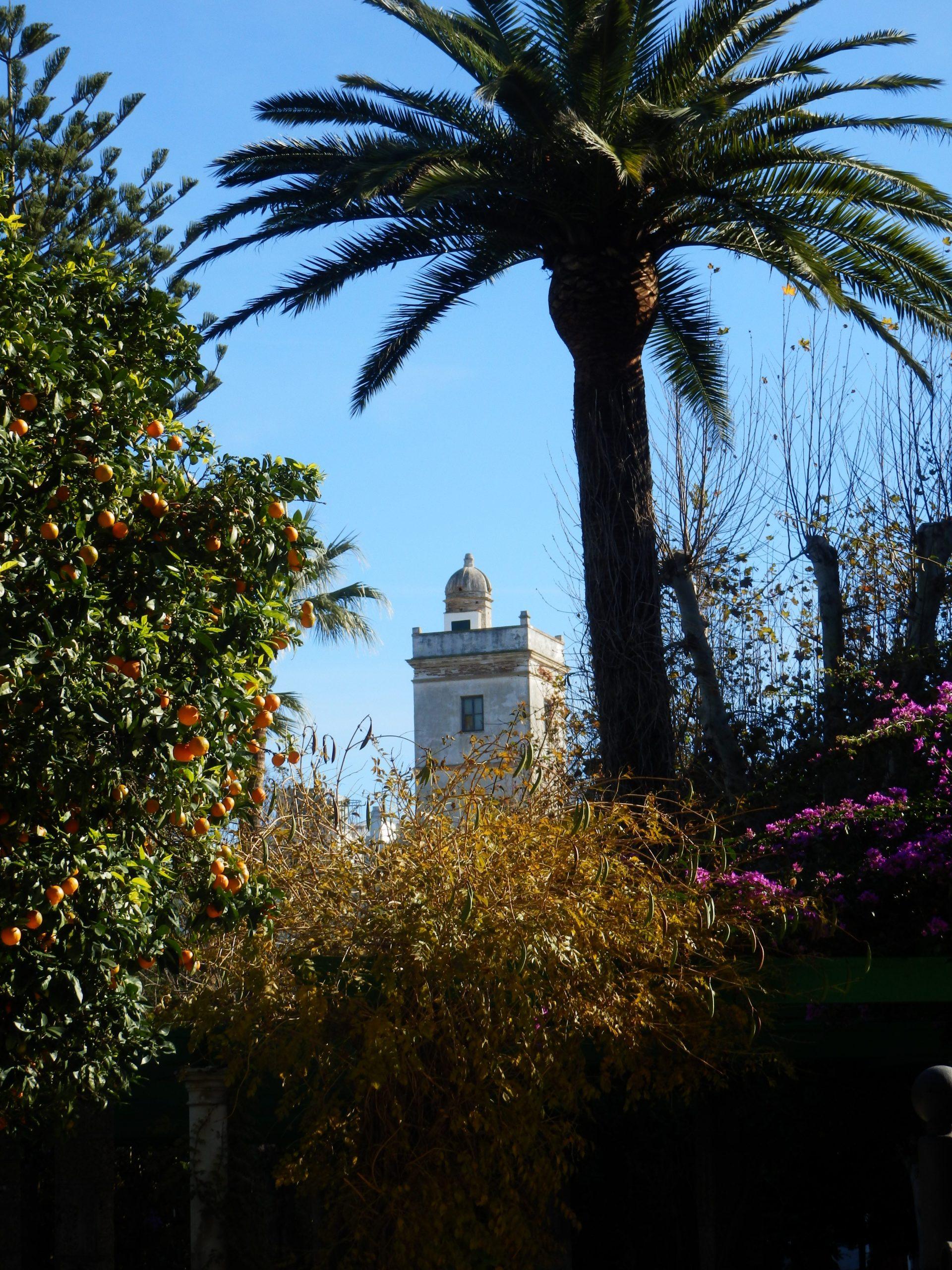 TOUR LEGENDS AND MYSTERIES OF CÁDIZ